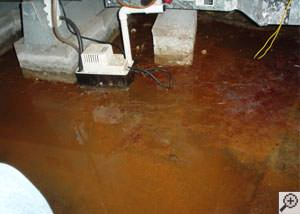 Water flooded with iron ochre and iron bacteria flooding a basement floor.